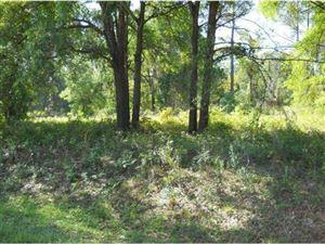 Photo of Lady Lake, FL 32158 (MLS # 372069)