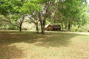 Photo of 17240 NE 148th Terrace Road, Fort McCoy, FL 32134 (MLS # 545082)