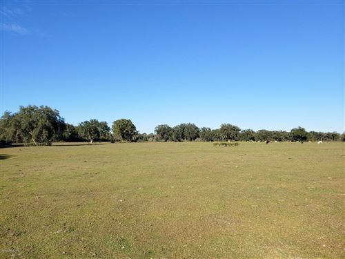 Photo of 130ac NE 315, Fort McCoy, FL 32134 (MLS # 568097)