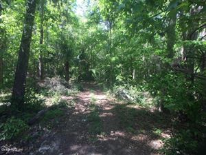 Photo of 0 SW 37th Place Road, Ocala, FL 34471 (MLS # 541102)
