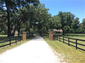 Photo of 8750 NW 136th Ave Road, Ocala, FL 34482 (MLS # 564102)