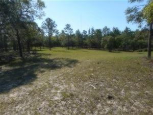 Photo of 16900 CR 328, Dunnellon, FL 34432 (MLS # 536108)