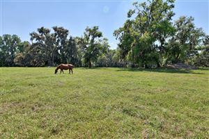 Photo of 11350 NW Highway 225, Reddick, FL 32686 (MLS # 553151)