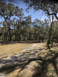 Photo of 4 Sequoia Drive, Ocklawaha, FL 32179 (MLS # 548157)