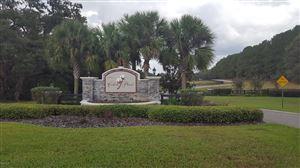 Photo of 0 SW 144 Ct Road, Ocala, FL 34481 (MLS # 546171)