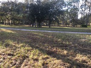 Photo of S/L 14 SE 21st Place, Morriston, FL 32668 (MLS # 546175)