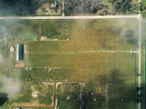 Photo of Lot 1 NE 120th Avenue, Williston, FL 32696 (MLS # 556177)