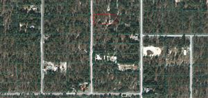Photo of Lot 29 SW Bigtree Rd, Dunnellon, FL 34431 (MLS # 566183)