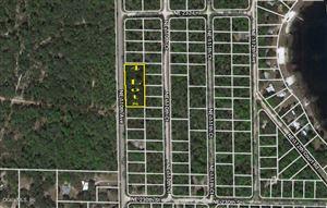 Photo of TBD NE 110th Avenue, Fort McCoy, FL 32134 (MLS # 549184)