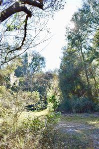 Photo of 000 NE 160th Avenue Road, Fort McCoy, FL 32134 (MLS # 549185)