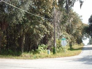 Photo of 325 SE 24th Street, Ocala, FL 34471 (MLS # 547208)