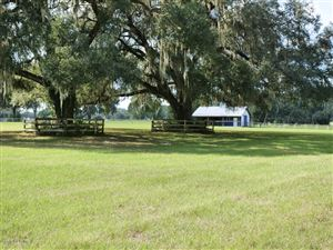 Photo of 1196 SW 125th Avenue, Ocala, FL 34481 (MLS # 546226)
