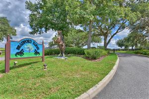 Photo of 00 SW 90th Lane, Ocala, FL 34476 (MLS # 560256)