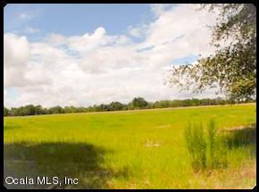 Photo of 9899 SE 70th Avenue, Trenton, FL 32693 (MLS # 537258)