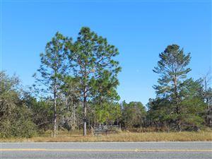 Photo of TBD SE State Road 121, Morriston, FL 32668 (MLS # 546261)