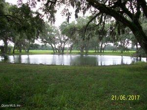 Photo of 17751 NE 2nd Place, Williston, FL 32696 (MLS # 540265)