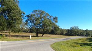 Photo of 0 Rolling Acres Road, Lady Lake, FL 32159 (MLS # 546331)