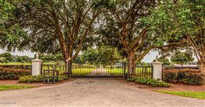 Photo of 3800 NW 165th Street, Reddick, FL 32686 (MLS # 539334)