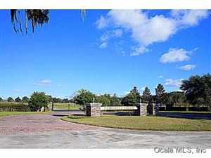 Photo of 0 NW 115th Avenue, Ocala, FL 34482 (MLS # 519360)