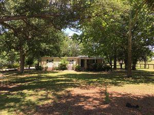 Photo of 7951 SE 200th Avenue, Morriston, FL 32668 (MLS # 556369)