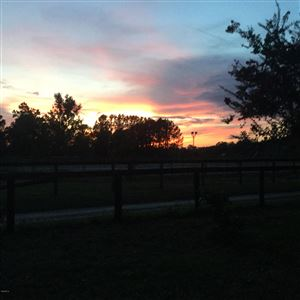 Photo of 4375 NE 86 Lane, Anthony, FL 32617 (MLS # 547374)