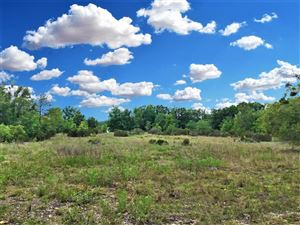 Photo of TBD NE 106TH Street, Bronson, FL 32621 (MLS # 536386)