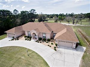 Photo of 8540 SW 204th Court, Dunnellon, FL 34431 (MLS # 550394)