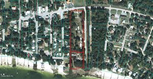 Photo of 12480 SE 136 Court, Ocklawaha, FL 32179 (MLS # 558417)