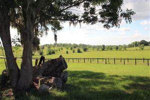 Photo of 5460 S Lecanto Highway, Lecanto, FL 34461 (MLS # 530431)