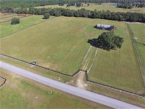 Photo of 19891 SE 15th Place, Morriston, FL 32668 (MLS # 547434)