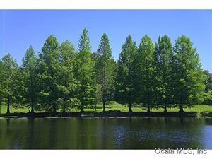 Photo of 20645 County Rd 329, Micanopy, FL 32667 (MLS # 534442)