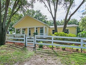 Photo of 28088 SE 175th Street, Umatilla, FL 32784 (MLS # 541450)