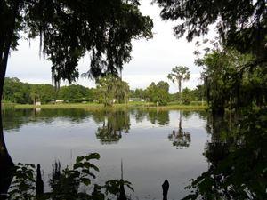 Photo of 12459 N Osborne Avenue, Dunnellon, FL 34434 (MLS # 541464)