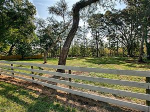 Photo of 10318 E Gobbler Drive, Floral City, FL 34436 (MLS # 546482)