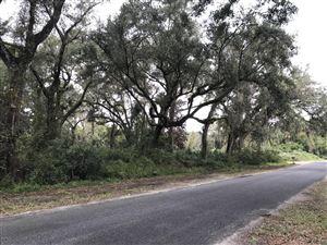 Photo of 2365 NE 181st Lane, Citra, FL 32113 (MLS # 546484)