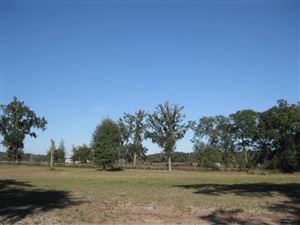 Photo of 00 NW 8th Lane, Ocala, FL 34482 (MLS # 547500)