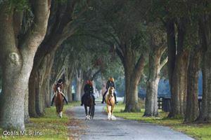 Photo of 0 SE 116th Pl Road, Ocala, FL 34480 (MLS # 563538)