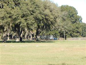 Photo of 5897 NE Highway 349 Street, Old Town, FL 32680 (MLS # 547539)