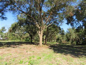 Photo of 14815 SE 140 st, Weirsdale, FL 32195 (MLS # 546548)