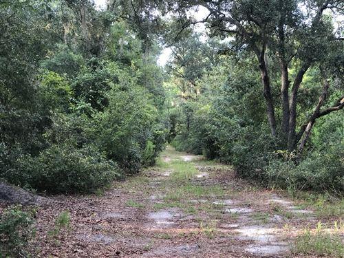 Photo of 0 NE 148th Street Road Road, Fort McCoy, FL 32134 (MLS # 568554)