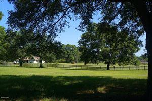 Photo of 3451 SE 186 Avenue, Morriston, FL 32668 (MLS # 553556)