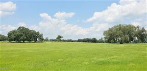 Photo of 141ac NW Gainesville Rd (aka Hwy 25A), Reddick, FL 32686 (MLS # 559561)