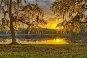 Photo of 8480 NW Hwy 225, Ocala, FL 34482 (MLS # 551568)