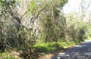 Photo of 17608 SE 26th Street, Micanopy, FL 32667 (MLS # 559575)