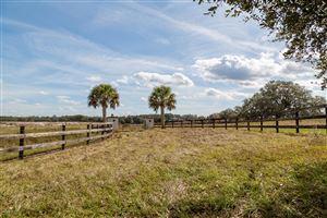 Photo of 0 NW 162nd Terrace, Morriston, FL 32668 (MLS # 557601)