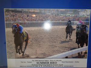 Photo of 17490 S Hwy 475, Summerfield, FL 34491 (MLS # 550604)
