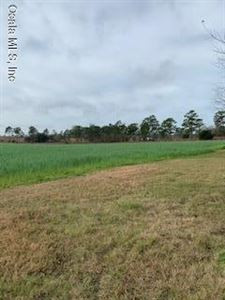 Photo of 5651 SR 121, Morriston, FL 32668 (MLS # 548620)