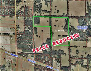 Photo of 17431 Highway 27 Alternate, Williston, FL 32696 (MLS # 543623)