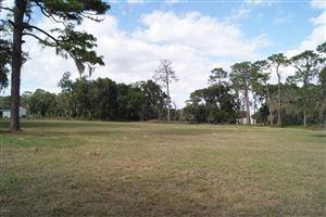 Photo of 11285 SE SE HWY 42, Summerfield, FL 34491 (MLS # 548630)