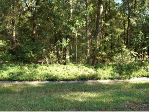 Photo of LOT 5 SW 93rd Loop, Dunnellon, FL 34432 (MLS # 382635)